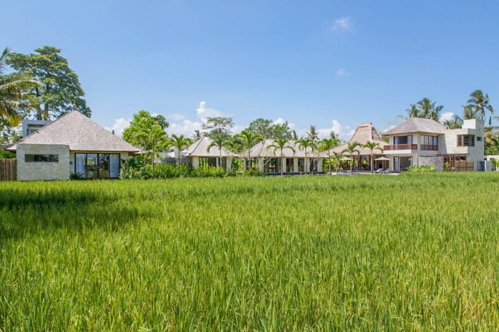 Villa Lumia Bali - Overview from the Rice Fields