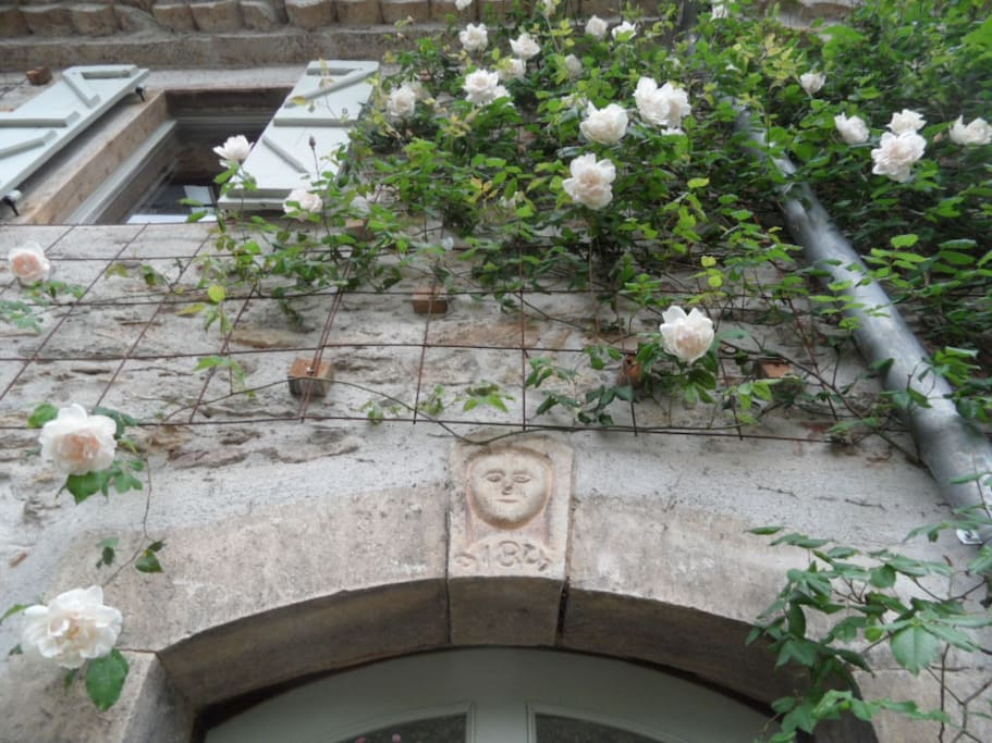 Detail above the front door with scented roses