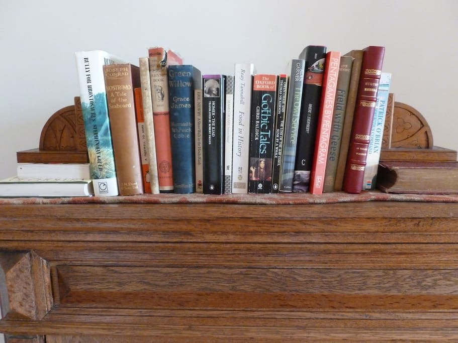 Interesting books in all the rooms
