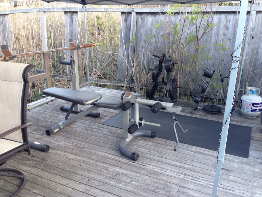 Our little outdoor gym. Dumbbells, barbells and more!
