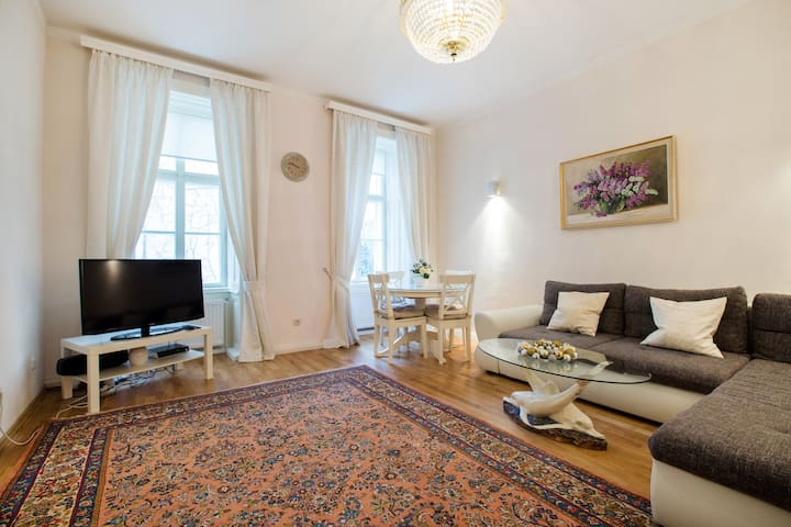 Quiet, cosy and charming - Vienna - Apartamento