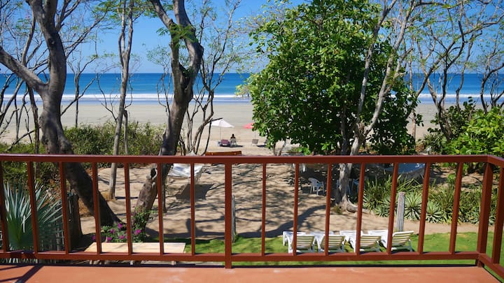 Steps from the beach! Beautiful beachfront home w/ private pool! - CASA MANDARINA