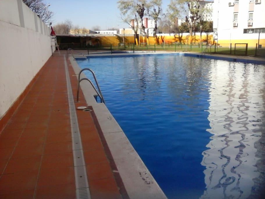 Big swimming pool with bar