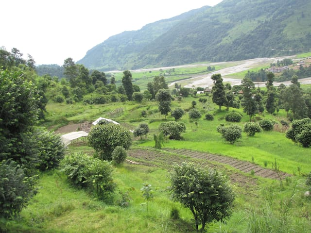 Homestay with a Farmers' Family: Organic Living - Pokhara