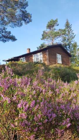 Hytte med enkel standard i nydelige omgivelser.