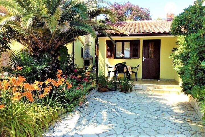 Villa Aurora - House Klaudio with Terrace
