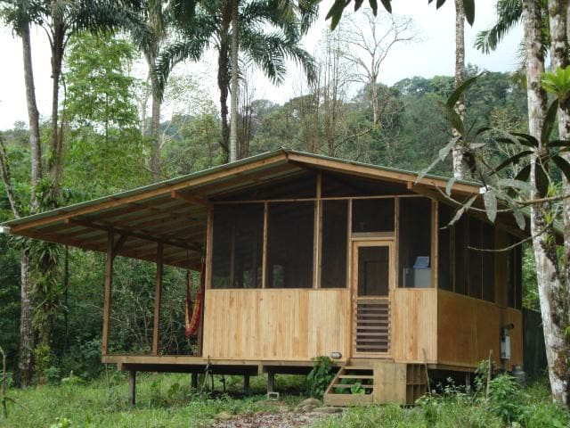 Howler Monkey Cabin! A Cool Jungle Retreat