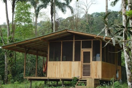 Howler Monkey Jungle Hideaway! - Dominical Costa Rica - Cabin