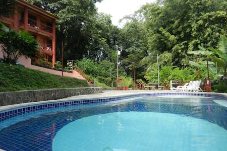 2BR/1BA Apt. in Paradise! 750ft²  - Manuel Antonio - Apartment