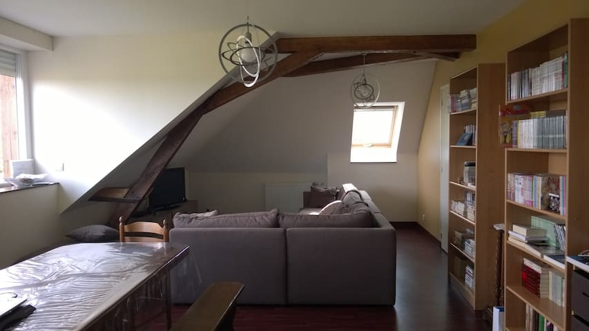 Quiet and cosy Bed & Breakfast - Mulsanne - Apartament