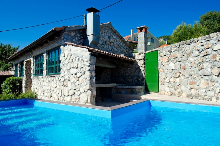 Villa with private pool and jacuzzi - Mali Iž - Rumah