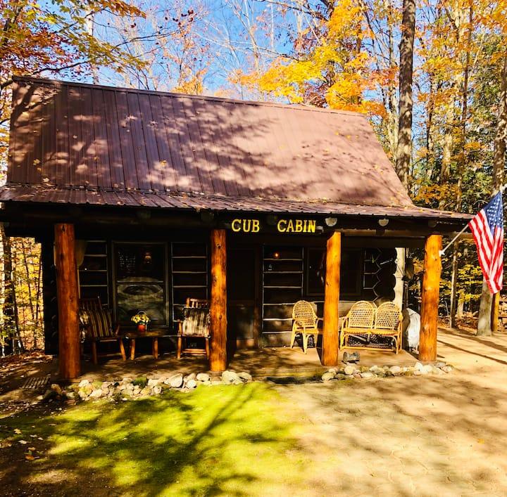 Cub Cabin near Mackinaw City, Michigan