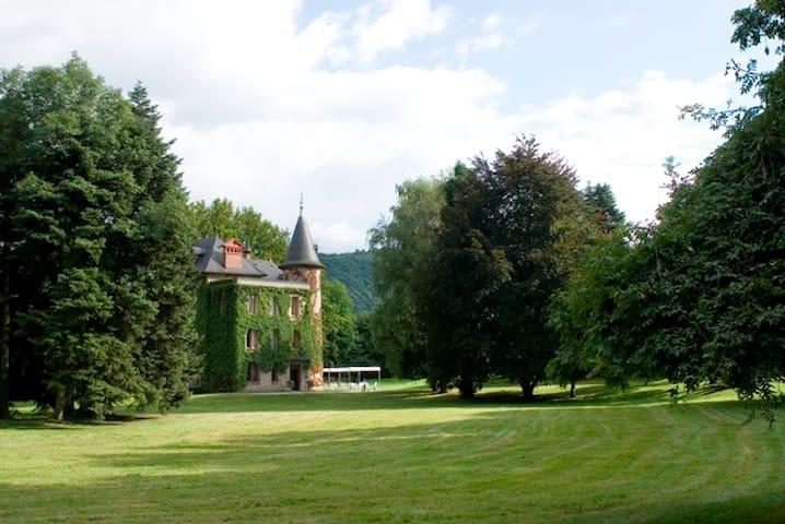 Chambre Tradition au Château - Coise-Saint-Jean-Pied-Gauthier - Istana