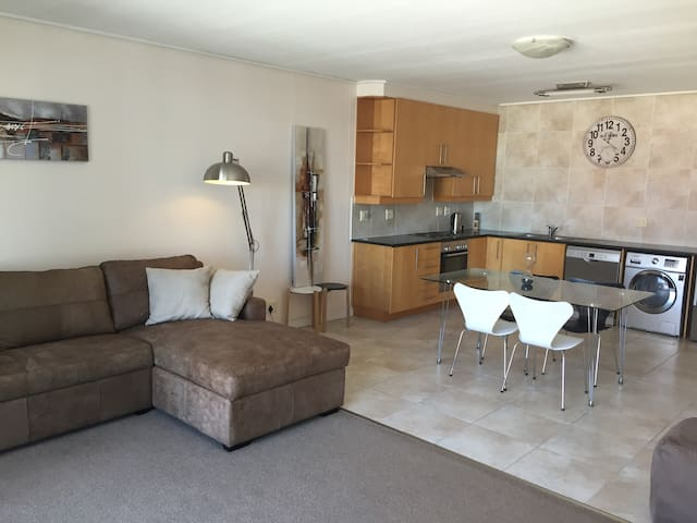 Spacious 1 bedroom apartment in Central Cape Town