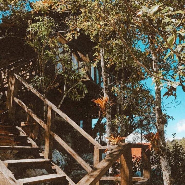 Cabaña Selva Chiapas