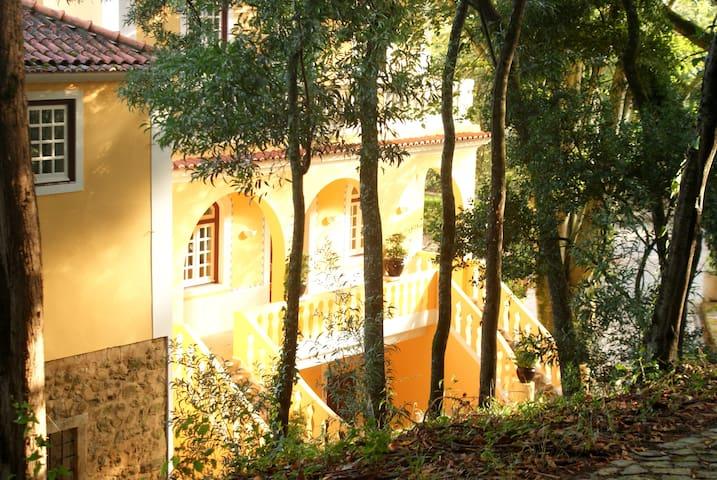 Casa Amarela - Vila Verde dos Francos - Villa