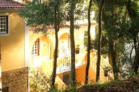 Casa Amarela - Vila Verde dos Francos - 別荘