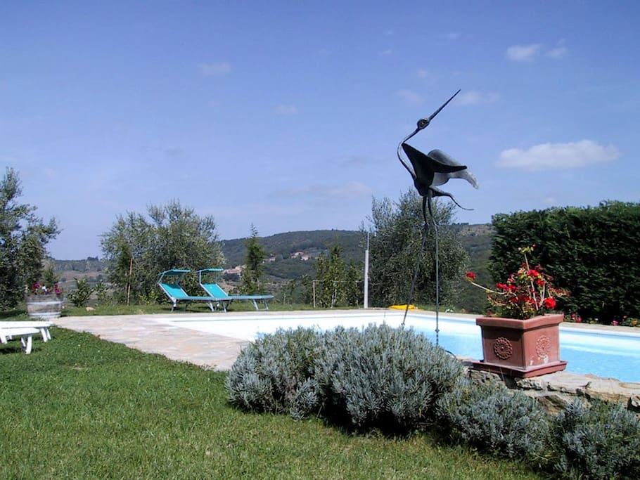 Our Pool with a bird sculpture