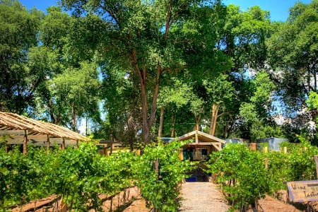 Vineyard/Winery Casitas -  Santa Fe - Santa Fe
