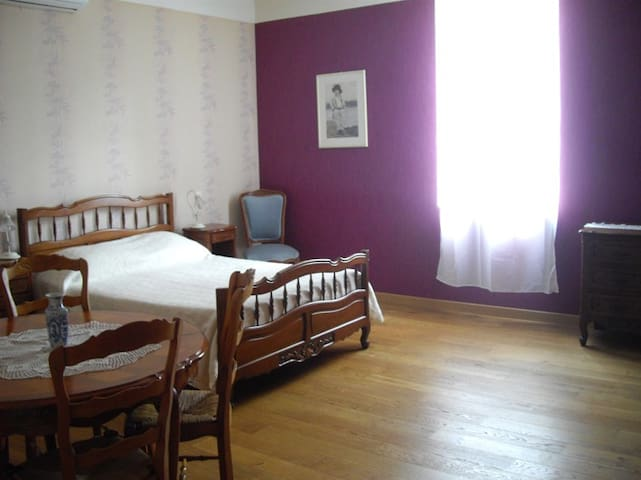 Chambre dans maison de maitre - Monclar-de-Quercy - Bed & Breakfast