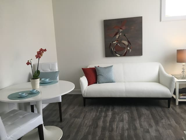 Newly Renovated Glebe suite with parking/ Netflix