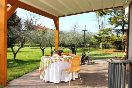 Cam. Romantique - vacanza o lavoro - Bellocchi - 家庭式旅館