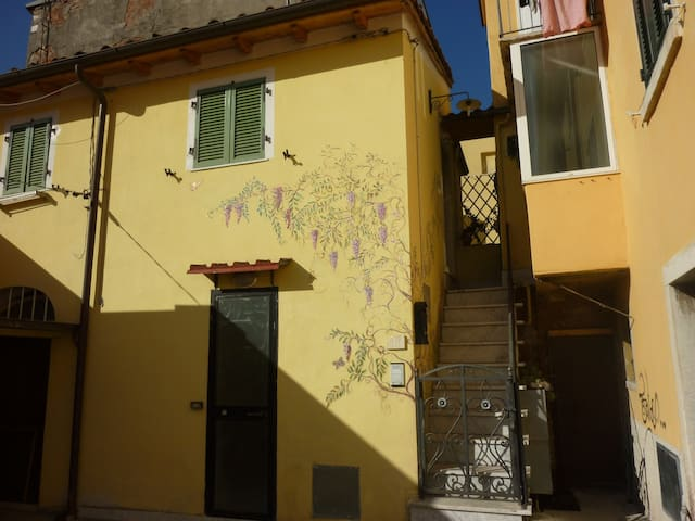 Studio in centro di Carrara  - Carrara - Apartament