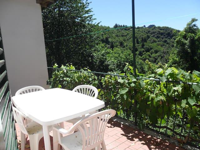 casa vacanza in montagna - Montaldo di Mondovì - Flat