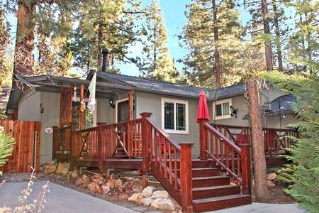 Pet friendly vacation rentals apartments houses in big for Big bear cabins pet friendly