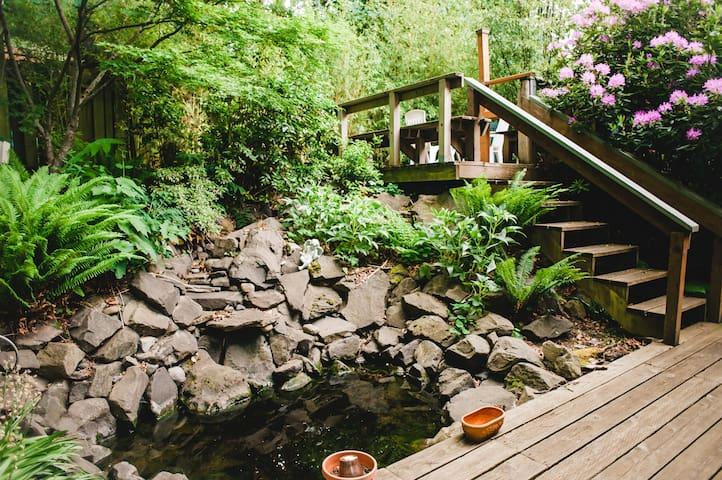 Backyard pond/garden outside your window