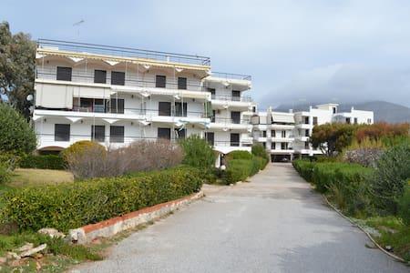 Luxury Apartment in Lagonisi - Anatoliki Attiki - Apartment