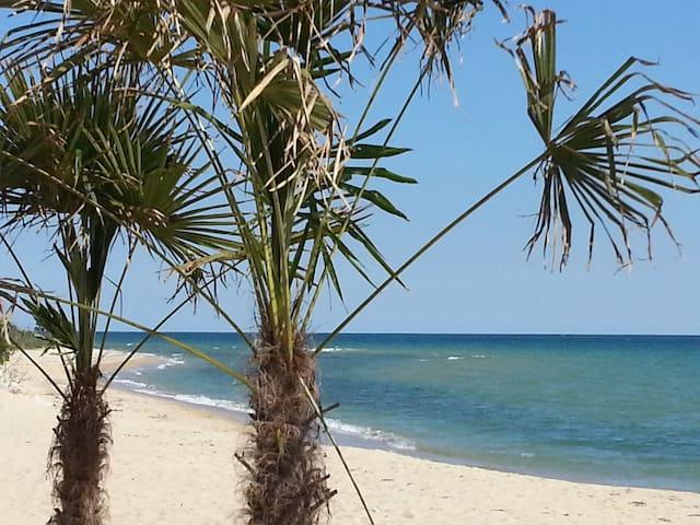 Ofrinio beach, kavala, Grèce . - Ofrinio Beach - Flat