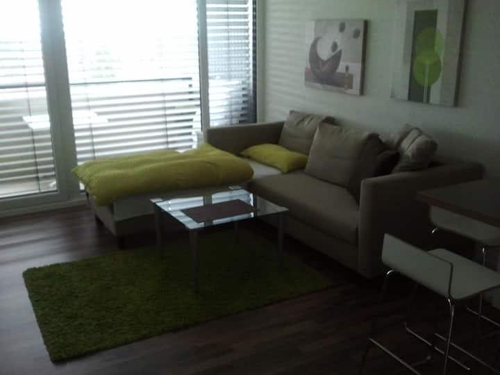 1-Zimmer-Appartement mit Küchenzeile und Balkon