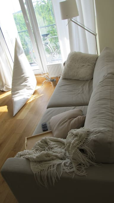 Couch in the living room (up to two people can comfortably sleep on this couch)