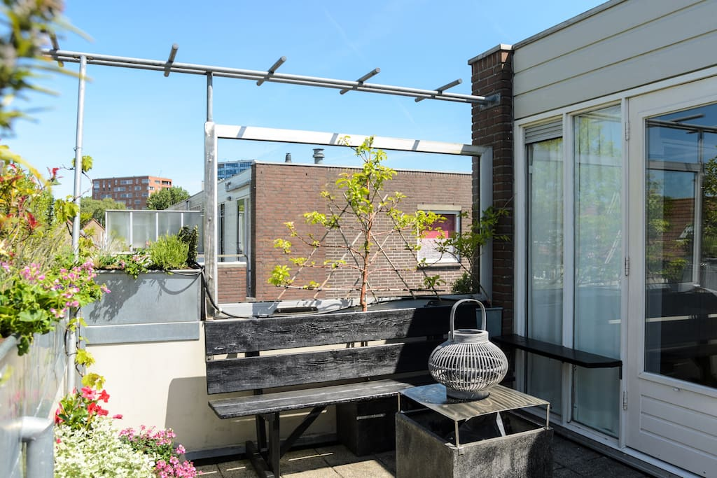 Nice roof terras
