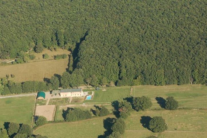 Un petit coin de paradis - Souvigny - Apartment