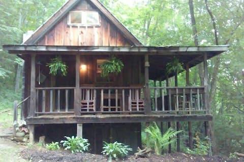 Nita's Rustic Cabin