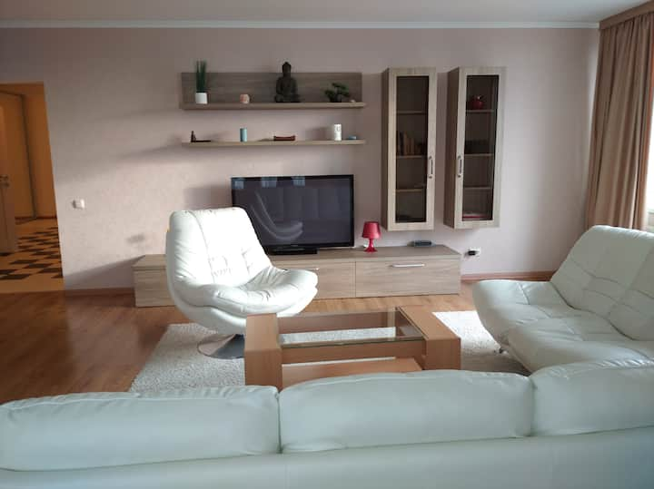 VIP 2 bedrooms flat in the very center of Chisinau