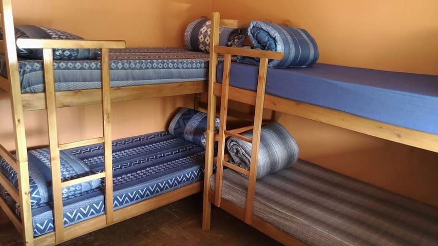 SeuNabuco Hostel tem quarto compartilhado c Arcond - แซนโตส - บ้าน
