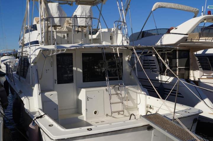 Confortable Motoryacht Port Forum