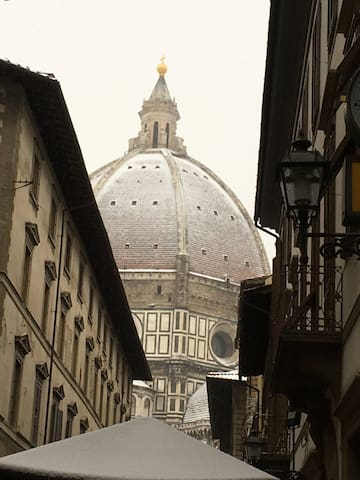a very rare snow-covered Dome