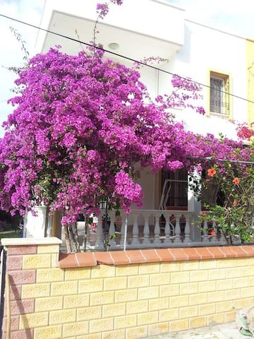Özdere'de denize 50 mt yazlık - İzmir - House
