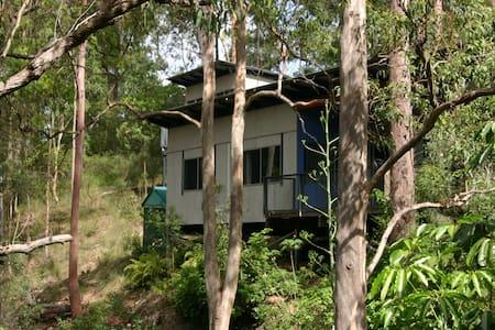 Brizzies Bush Bach - Kenmore Hills - Hus