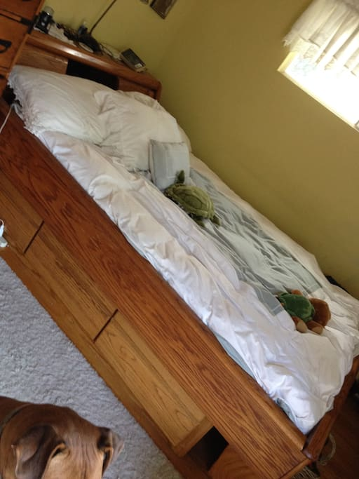 queen size water bed