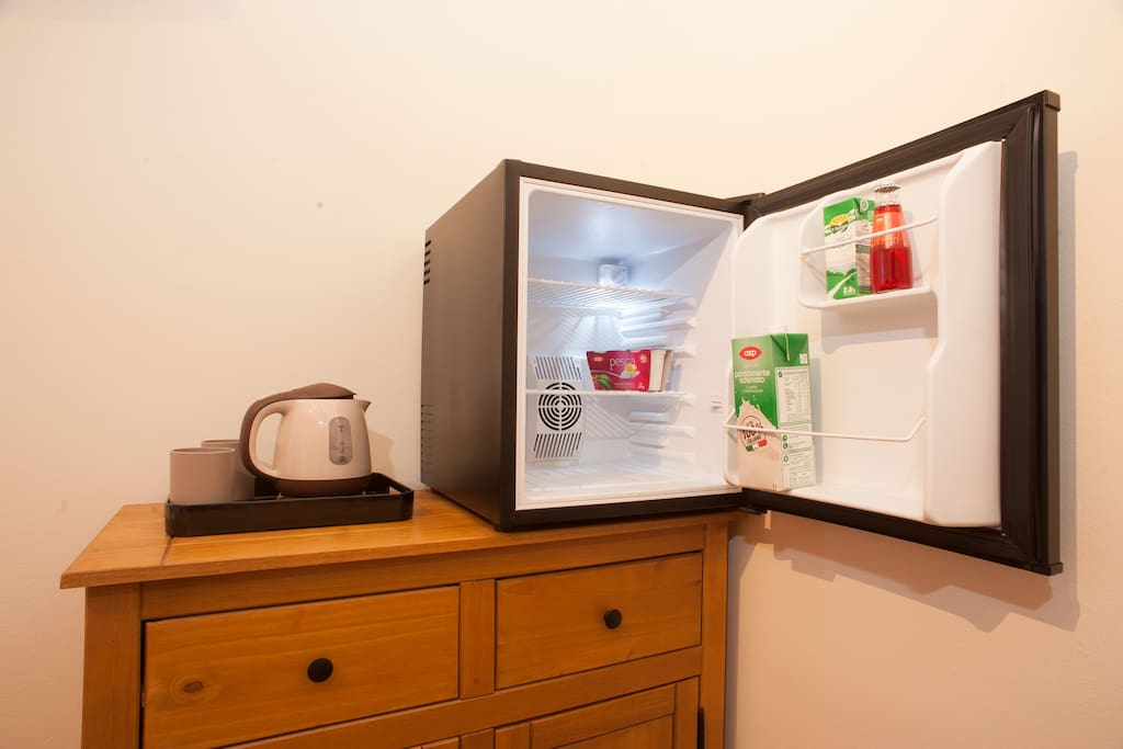 Fridge and kettle in the room