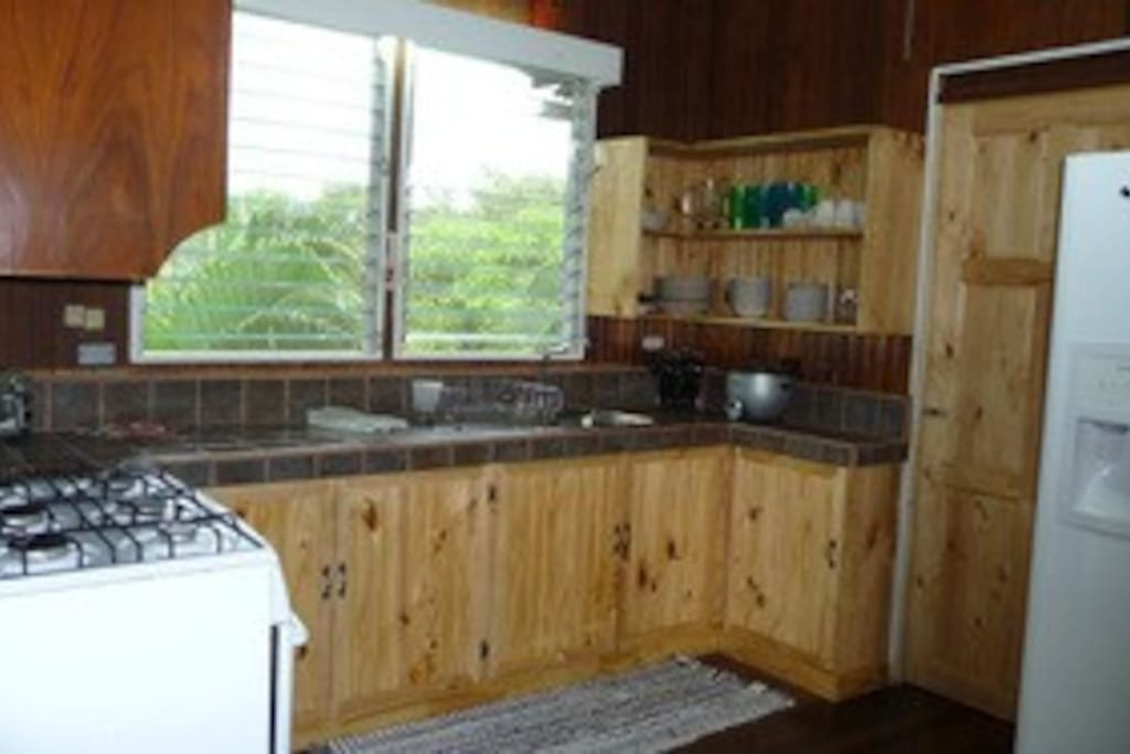 Spacious kitchen with stove, fridge, and sink with lots of counter space!