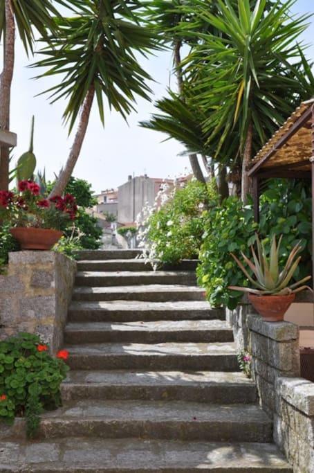Accesso alla casa dalla scala di granito circondata da fiori.