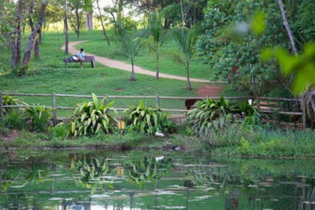 Parque Olhos D'Água, ao lado do apto