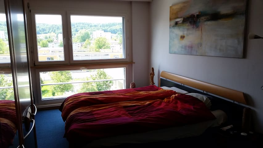 Luminous 2 bedroom apart in Zurich - Zürich - Lakás