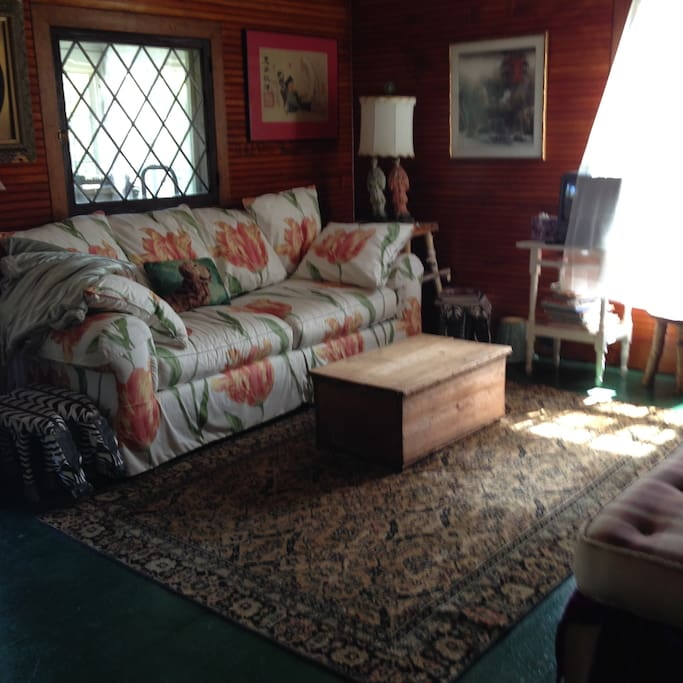 Original leaded glass window and  Oriental rugs from 1910 construction.  And a 1980's TV/VCR with lots of tapes!